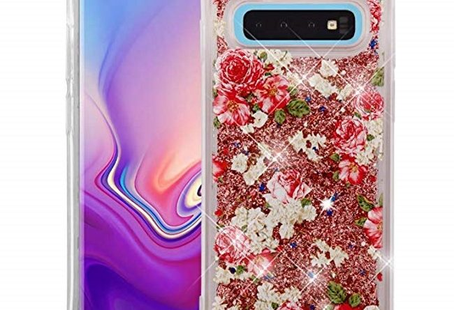 Interesting Casely Cases for Galaxy S10
