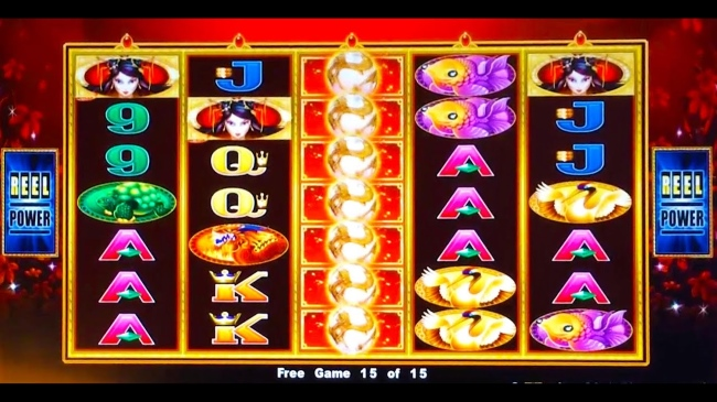 Video poker double double bonus