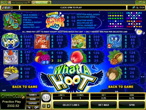 What a hoot Pokies game feature